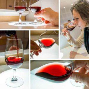 odore del vino