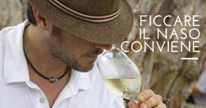 L'odore del vino. Quando ficcare il naso conviene