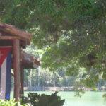 viaggio a cuba: la isla grande tra santeria e …
