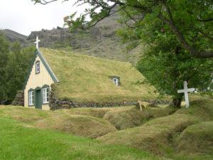 cuscini erba islanda